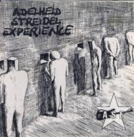 ADELHEID STREIDEL EXPERIENCE