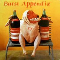 BURST APPENDIX